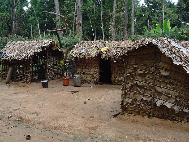Locuinta pigmeilor in Africa Centrala
