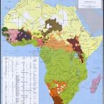 Grupurile etnice din Africa