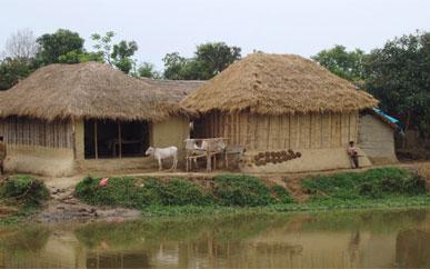 Locuinta in India