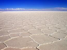 Crusta de sare