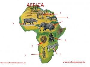 Fisa de evaluare pentru clasa a V-a (Animale Africa)