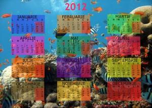 calendar 2012 Viata in Ocean