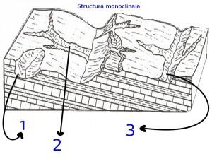 Structura monoclinala