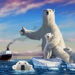 Ursii se muta mai spre nord