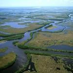 Imagine din delta MIssissippi (SUA)