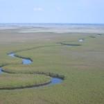 Imagine din delta fluviului Okavongo(Botswana)