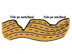 Tipuri de vai in structura cutata