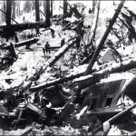 Dezastru produs de avalansa in Wellington