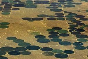 Irigatii cu pivot central in Colorado