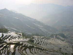 Terase de orez in Filipine