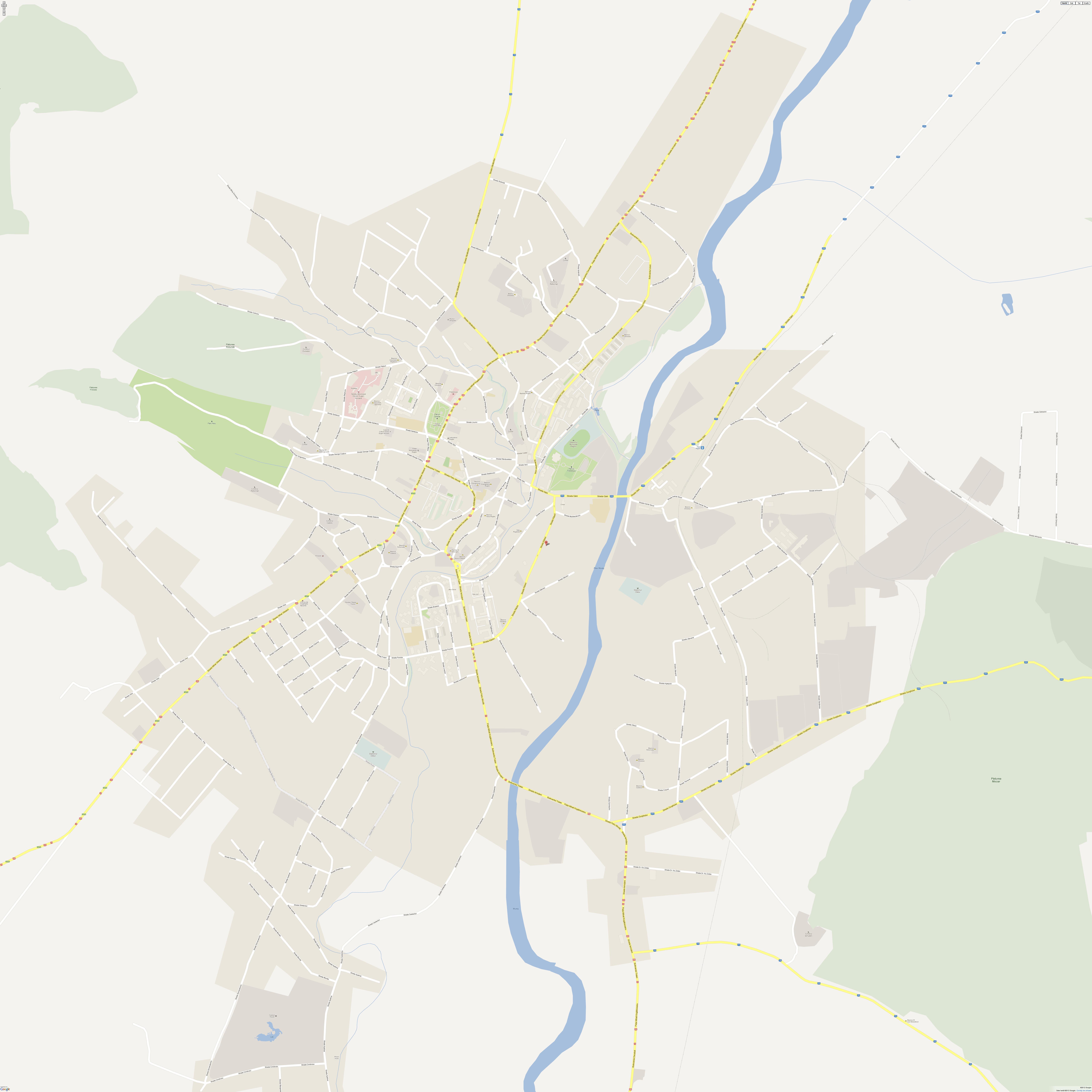 Harta Reghin