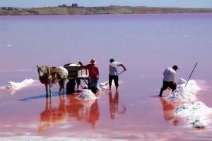 Pink-Masazir-Lake