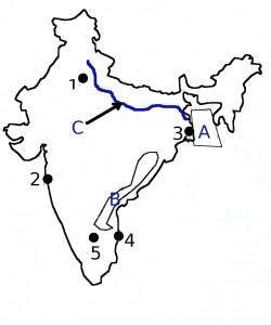 India fisa de evaluare