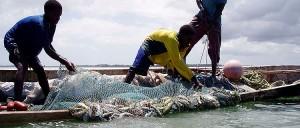 Pescari pescuind in Zanzibar