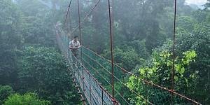 Platforma in Borneo