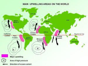 zonele cu upwelling pe glob