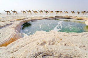 danakil lac de sare