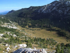 Uval din Alpii Dinarici