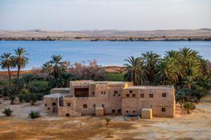 oaza siwa